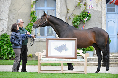 REPORTAGE : L'ARTISTE PEINTRE VERONIQUE LEMORE LIVRE UN TABLEAU D'ALLIGATOR FONTAINE A BERNARD LE COURTOIS, HARAS DE BRULLEMAIL - PHOTO : © CHRISTOPHE BRICOT