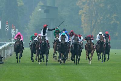 the 94th Qatar Prix de l'Arc de Triomphe horse race