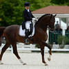 France, Compiègne : <br /> Claire Gosselin (France) riding Karamel De Lauture during the Grand Prix Special CDI3*, Grand Prix Brézillon,  Dressage competition of the FEI CDIO5*, Compiègne on May 20th , 2016, in Compiègne, France - Photo Christophe Bricot