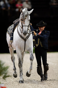 France, Paris : Rafael Soto , The Royal Andalusian School of Equestrian Art at the Accor Hotels Arena, Bercy, on  October 8th , 2016, in Paris, France - Photo Christophe Bricot
