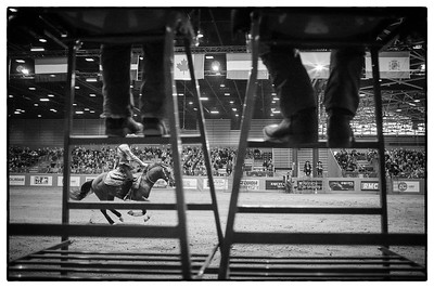 France, Chassieu :  Ambiance during the reining International Competition of Equita Lyon, on October 29th , 2016, in Chassieu, France - Photo Christophe Bricot