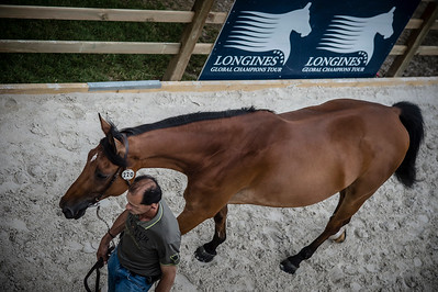 France, Paris : ambiance   during the Longines Paris Eiffel Jumping, Global Champions Tour in June 30th , 2016, in Paris, France - Photo Christophe Bricot