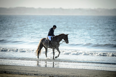 France, La Baule :  Romain Duget riding on the beach during the FEI Longines International Jumping of La Baule , on May {day th , {year4}, in La Baule, France - Photo Christophe Bricot