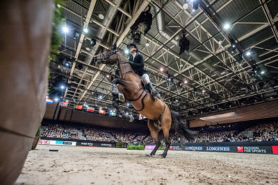 France, Lyon : Pénélope LEPREVOST (FRA) riding Urano de Cartigny during Equita'Masters competition, Equita Lyon, on November 4 , 2017, in Lyon, France - Photo Christophe Bricot