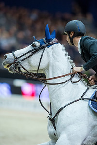 France, Lyon : Pieter DEVOS (BEL) riding Gin D during Equita'Masters competition, Equita Lyon, on November 4 , 2017, in Lyon, France - Photo Christophe Bricot