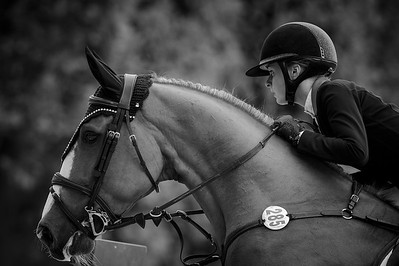 France, Paris : Maartje Verberckmoes riding Arco d'Obercourt during the Longines Global Champions Tour of Longines Paris Eiffel Jumping, on June 30th , 2017, in Paris, France - Photo Christophe Bricot