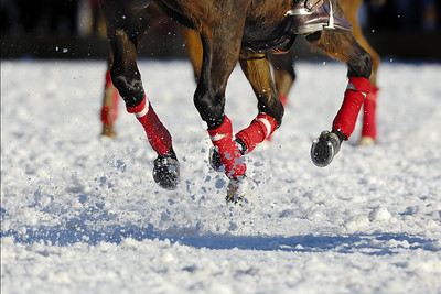 XIII MEGÈVE POLO MASTERS 17-20 JANVIER 2008  Polo sur neige - Megève  ILLUSTRATION : JAMBES DE CHEVAL SUR FOND DE NEIGE  © Christophe Bricot