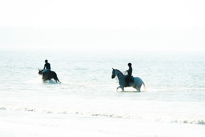 La Baule, France : illustration, horses on the beach during the International Show Jumping of La Baule 2018 (Jumping International de la Baule), on May 20, 2018, in La Baule, France - Photo Christophe Bricot