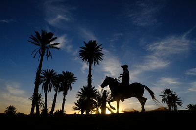 """Dunes of Merzouga, Morocco : The """"Gallops of Morocco"""". Gallops of Morocco is an equestrian raid in the Moroccan desert (Drâa-Tafilalet region) through the high dunes of Merzouga, on March 2, 2018, in Dunes of Merzouga, Morocco - Photo Christophe Bricot<br /> <br /> Les «Gallops of Morocco» est un raid équestre dans le désert marocain, (région du Drâa-Tafilalet) à travers les hautes dunes de Merzouga. Après quelques nuits dans le désert, l'aventure s'achèvera au Kasbah hôtel XALUCA aux portes du désert. Une aventure humaine, insolite autour du cheval barbe et arabe-barbe dans le désert magique de Merzouga, du 25 février au 4 mars 2018. © Christophe Bricot"""