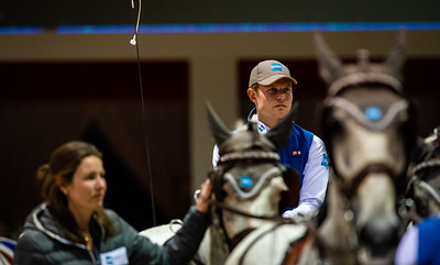 {country}, {city} : Bram CHARDON (NED) during FEI Driving World Cup Final,  Jumping International in Bordeaux, western France, on February 10th , 2019, in {city}, {country} - Photo Christophe Bricot / CEB