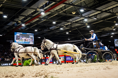 France, Bordeaux : Bram CHARDON (NED) during FEI Driving World Cup Final,  Jumping International in Bordeaux, western France, on February 10th , 2019, in Bordeaux, France - Photo Christophe Bricot / CEB