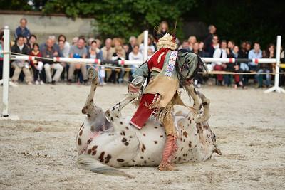 JOURNEE DU CHEVAL : cheval appaloosa PORTES OUVERTES ET SPECTACLE AU HARAS DE BOUFFEMONT - © CHRISTOPHE BRICOT