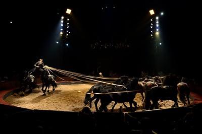 France, Bois de Boulogne : Silvia , nouveau spectacle au Cirque National Alexis Gruss - 40eme création - hommage à Silvia Monfort  - MAUD FLOREES PRESENTE UNE NOUVELLE POSTE AUX 17 ÉTALONS (JANGO, CHAGALL, EPONE, FUENTE, ZAFRA, NOURA, XAROP, LEZIRA, TOURON, OVIEDO, ALZIRA, SUZA, TOURAL, FIGO, LINARES, MALAGA, ISIS, ET AU CENTRE, ALEXIS GRUSS - Photo Christophe Bricot