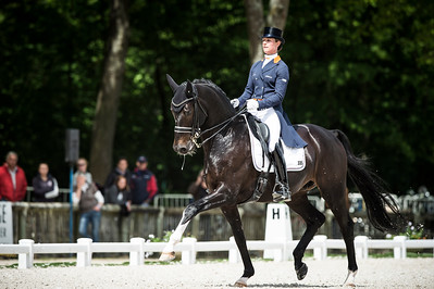 France, Compiègne :  Adelinde Cornelissen (Netherlands) riding Aqiedo  during the Grand Prix Barriquand, CDI3*, Dressage competition of the FEI CDIO5* of Compiègne on May 19th , 2016, in Compiègne, France - Photo Christophe Bricot