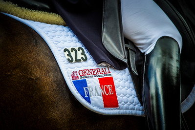 France, Compiègne :  Karen Tebar (France) riding ricardo  during the Grand Prix Barriquand, CDI3*, Dressage competition of the FEI CDIO5* of Compiègne on May 19th , 2016, in Compiègne, France - Photo Christophe Bricot