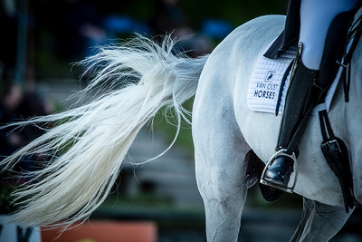 France, Compiègne : Anne Van Olst (Denmark) riding Zidhane  during the Grand Prix Barriquand, CDI3*, Dressage competition of the FEI CDIO5* of Compiègne on May 19th , 2016, in Compiègne, France - Photo Christophe Bricot