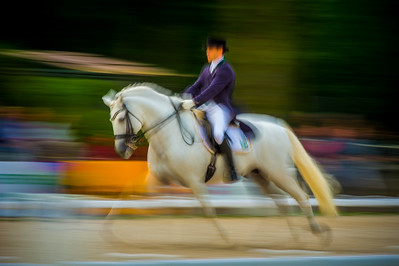 France, Compiègne :  Pedro Manuel Tavares De Almeida (Brazil) riding Xaparro Do Vouga  during the Grand Prix Barriquand, CDI3*, Dressage competition of the FEI CDIO5* of Compiègne on May 19th , 2016, in Compiègne, France - Photo Christophe Bricot