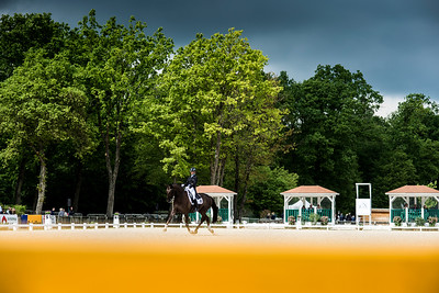 France, Compiègne :  Dominique Bunse (Germany) riding First Edition 9  during the Grand Prix Barriquand, CDI3*, Dressage competition of the FEI CDIO5* of Compiègne on May 19th , 2016, in Compiègne, France - Photo Christophe Bricot