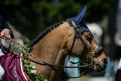 France, La Baule : Winner of the Derby, Maikel Van Der Vleuten riding Vdl Groep Quatro  during the Derby, Derby des régions des Pays de la Loire, FEI Longines International Jumping of La Baule , on May {day th , {year4}, in La Baule, France - Photo Christophe Bricot