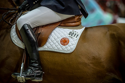 France, Lyon : Pedro VENISS (BRA) riding For Felicila during Equita'Masters competition, Equita Lyon, on November 4 , 2017, in Lyon, France - Photo Christophe Bricot