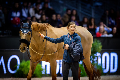 France, Bordeaux : farewell of Quenelle du Py, Olivier Robert's horse during the Jumping International in Bordeaux, western France, on February 9th , 2019, in Bordeaux, France - Photo Christophe Bricot / CEB