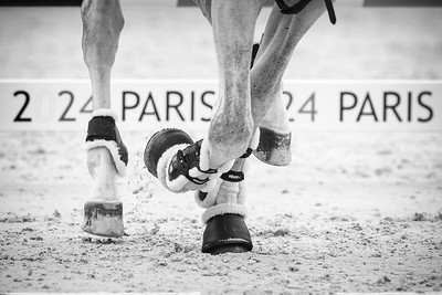 France, Versailles :illustration PARIS 2014 fences  during the Versailles Castle Show Jumping at the stables of the kings, on May 6th , 2017, in Versailles, France - Photo Christophe Bricot