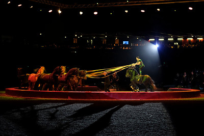 France, Bordeaux : show of Mr Alexis Gruss and his team during the International Show Jumping of Bordeaux, on February 1, 2018, in Bordeaux, France - Photo Christophe Bricot