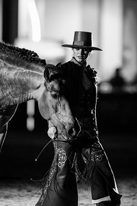 France, Villepinte : horse show from Clémence Faivre and Fuego during the Longines Masters of Paris 2017, on November 30 , 2017, in Villepinte, France - Photo Christophe Bricot
