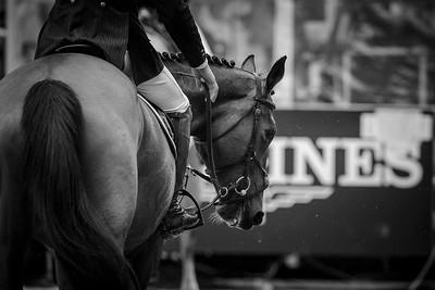 France, Paris : Jennifer Gates riding Pumped Up Kicks during the Longines Global Champions Tour of Longines Paris Eiffel Jumping, on July 1th , 2017, in Paris, France - Photo Christophe Bricot