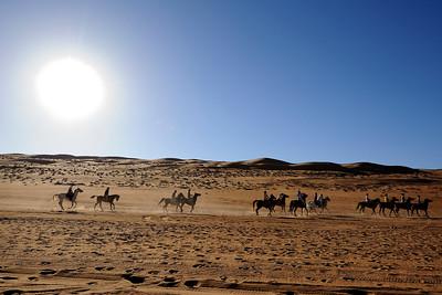 Sultanat d'Oman : Gallops of Oman (Galops d'Oman) - Course d'endurance, Raid dans le désert, race in thé désert - Photo Christophe Bricot