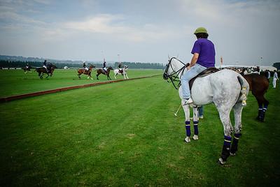 POLOCLUB DE DEAUVILLE TOURNOI DU CENTENAIRE  © CHRISTOPHE BRICOT  Cheval de polo avec son soigneur en attente de rentrer sur le terrain.