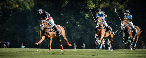 FRANCE, Poloclub de Chantilly - Ferme d'Apremont :  FINALE : WHY NOT / TOM TAILOR during the the French Open 2013 in Apremont (France)  September 21th, 2013 - 2nd Women French Open Chopard - 13 th French Open - 13 ème Open de France – Finales du samedi 21 Septembre- Photo : Christophe Bricot  composition des équipes : FEMMES : EN BLEU :  TOM TAILOR – CENTRE PORSCHE ROISSY Lavinia Fabre (Cap.) - FRA Naomi Schröder - DEU Tahnee Schröder - DEU Lia Salvo – ARG  EN NOIR ET ROSE : WHY NOT Hana Grill (Cap.) - AUS Gaele Gosset - FRA Hazel Jackson - GBR Anna Kates-Davis – GBR