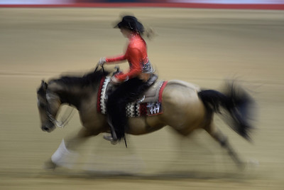 France, Chassieu : Tiara Van Dongen riding Sure Sliding Wimp during the reining International Competition of Equita Lyon, on October 29th , 2016, in Chassieu, France - Photo Christophe Bricot