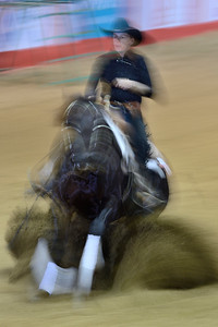 France, Chassieu : Floriane De Bermont riding Jac Leaflet Dream during the reining International Competition of Equita Lyon, on October 29th , 2016, in Chassieu, France - Photo Christophe Bricot