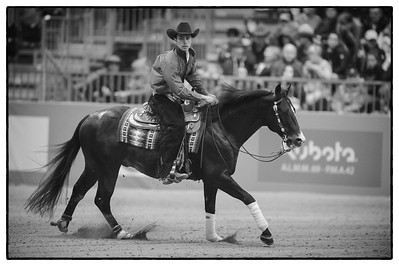 France, Chassieu :  Klaus Lechner riding Cody Rooster Delmaso during the reining International Competition of Equita Lyon, on October 29th , 2016, in Chassieu, France - Photo Christophe Bricot