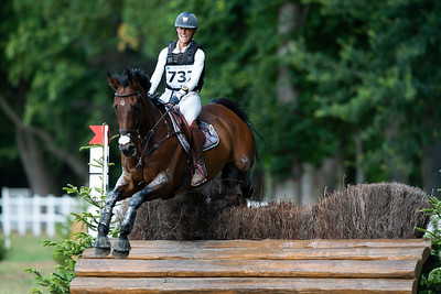 France, Marnes-la-Coquette : RIEDWEG Aurelie riding ROHAN DU MANEIX during the CCI4*-S-FFE competition of the Jardy Eventing Show 2020, July 11th, at Haras de Jardy,  Photo Christophe Bricot.