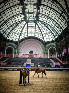 France, Paris : ambiance during the Saut-Hermès Jumping in the Grand-Palais, on March 17th , 2017, in Paris, France - Photo Christophe Bricot