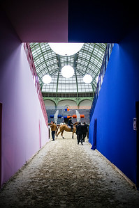 France, Paris : Ambiance during the Saut-Hermès Jumping competition in the Grand-Palais, on March 19th , 2017, in Paris, France - Photo Christophe Bricot