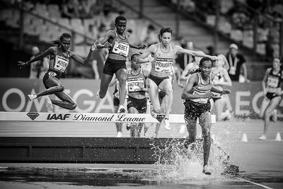 France, Paris : Kiyeno, Jebet (New world record), Praught (3000m Steeplechase women),  during the IAAF Diamond League - Meeting of Paris   in August 27th , 2016, in Paris, France - Photo Christophe Bricot.
