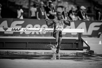France, Paris : Ruth JEBET (BRN), 3000m Steeplechase Women, during the IAAF Diamond League - Meeting of Paris   in August 27th , 2016, in Paris, France - Photo Christophe Bricot/DPPI Media