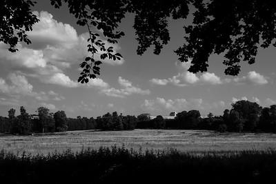 de Versailles (Versailles walk), Parc du Château de Versailles,