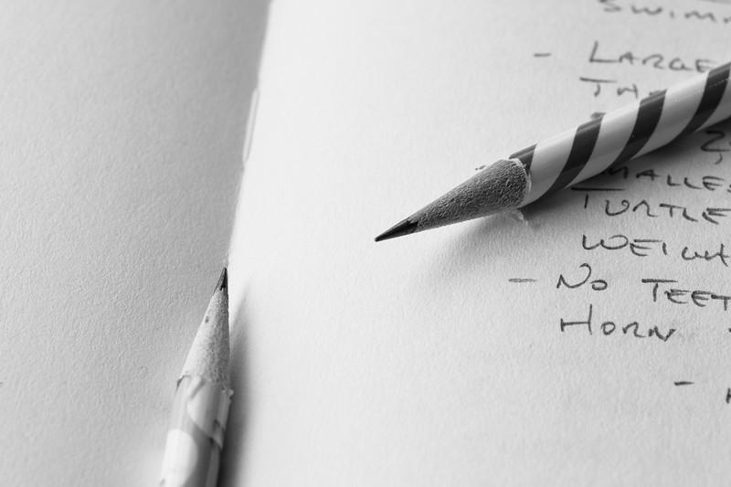 Pencils on Sketch Pad