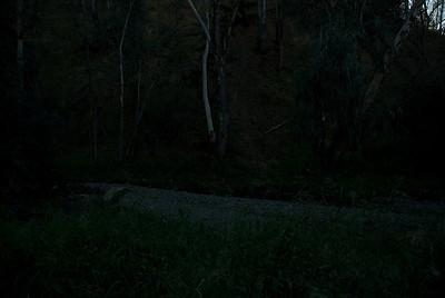 discoveringlivermored80 (52)