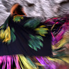 Native American Dancing 8 (intentional motion blur)