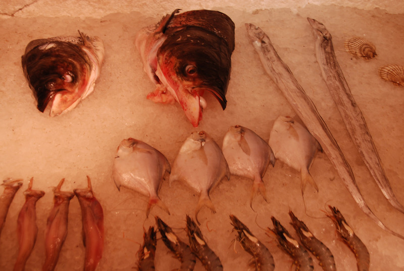 China's capital Beijing: Fish display