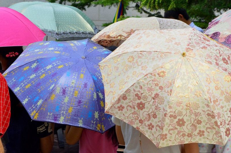 Umbrellas as people wait on a hot day to enter the National Museum (2)