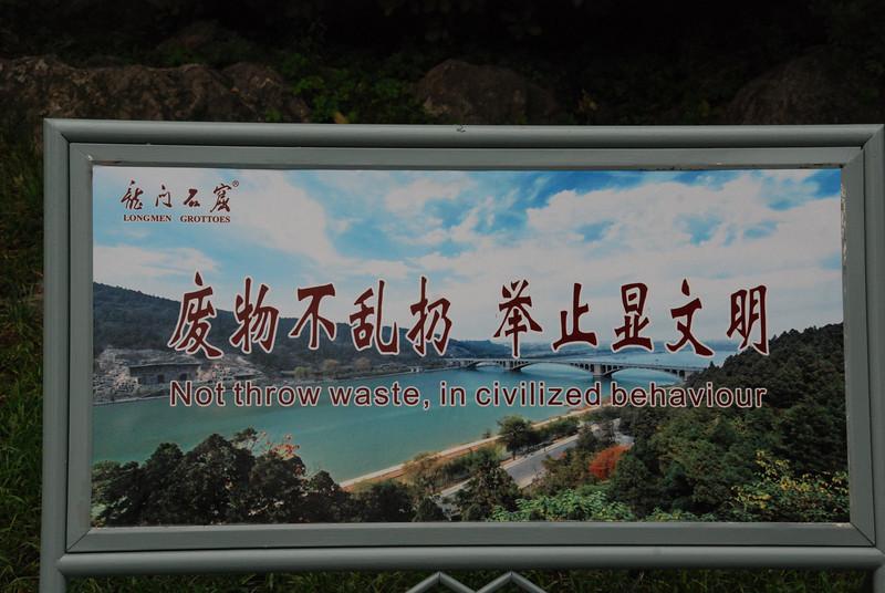 Longmen Grottoes Banner