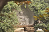 Louyang City White Horse Temple 30
