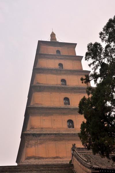 Louyang City White Horse Temple 11