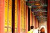 Louyang City White Horse Temple 23
